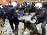 Polizei-Verwechslung