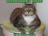Erpresser-Katze