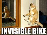Unsichtbares Fahrrad