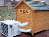 Rex Hundehütte