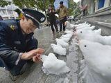 Polizeiarbeit