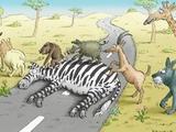 Zebrastreifen in Afrika