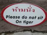 Nicht auf Tigern sitzen