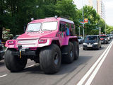 Pinkes Auto