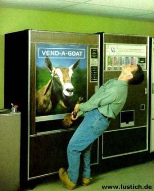 Ziegen-Automat