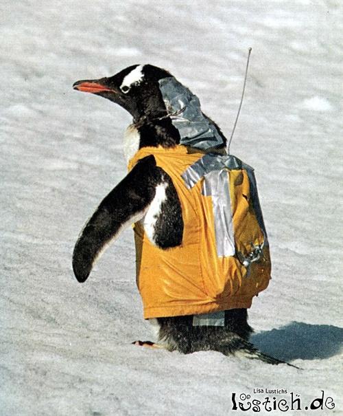 Pinguin-Rucksack