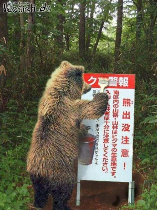 Anstreicher Bär
