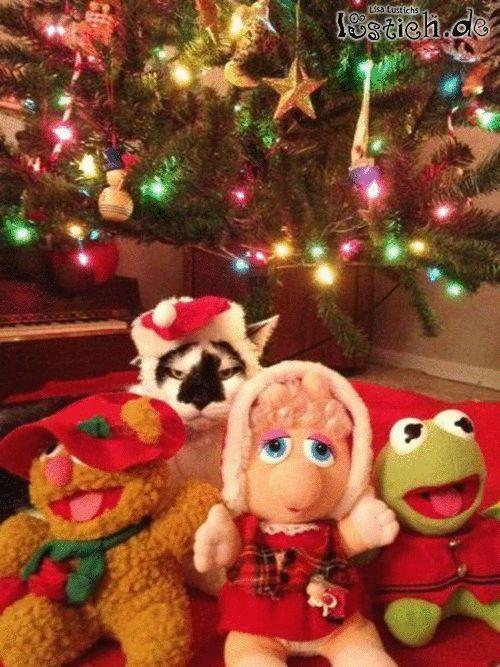 Weihnachten ist toll