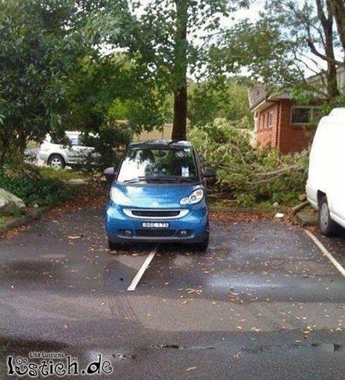 Smart Parken