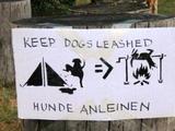 Hunde anleinen
