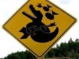 Gitarrespielende Krokodile