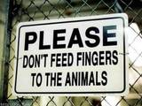 Finger füttern