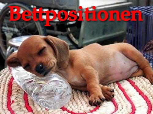 Bettpositionen